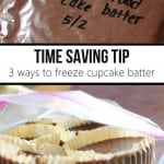Freeze-Cupcake-Batter
