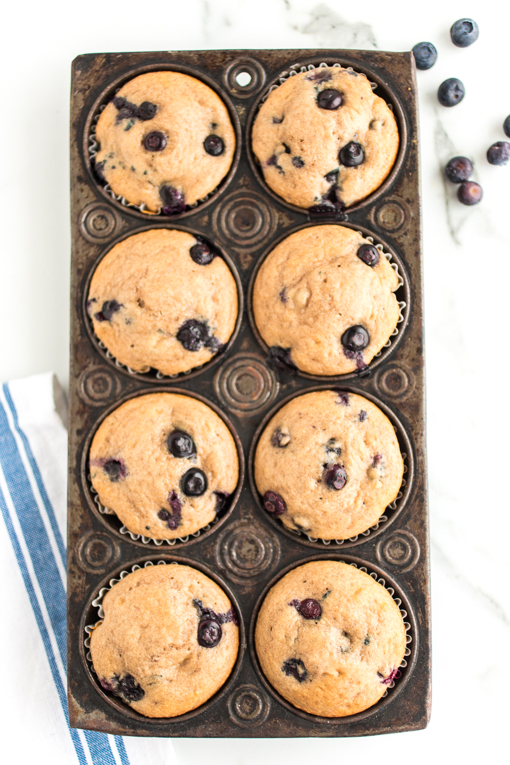 Blueberry Greek Yogurt Muffins are a delicious muffin recipe perfect for breakfast, after school, and just as a treat! The blueberries and blueberry greek yogurt gives it a great blueberry flavor!