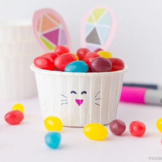 Jelly Bean Bunny-12