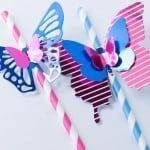 http://www.madetobeamomma.com/wp-content/uploads/2015/05/Minc-Butterfly-Straw-16-150x150.jpg
