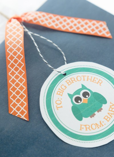 Big Sibling Hospital Gift Ideas