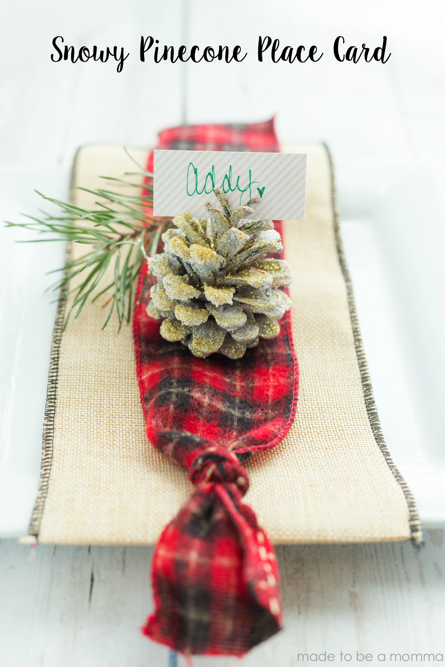 Snowy Pinecone Place Card