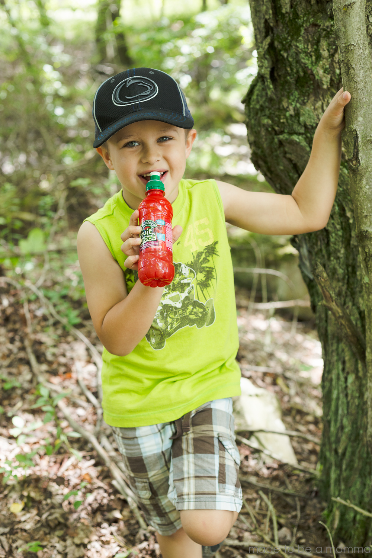 Fruit Shoot Hunt-25