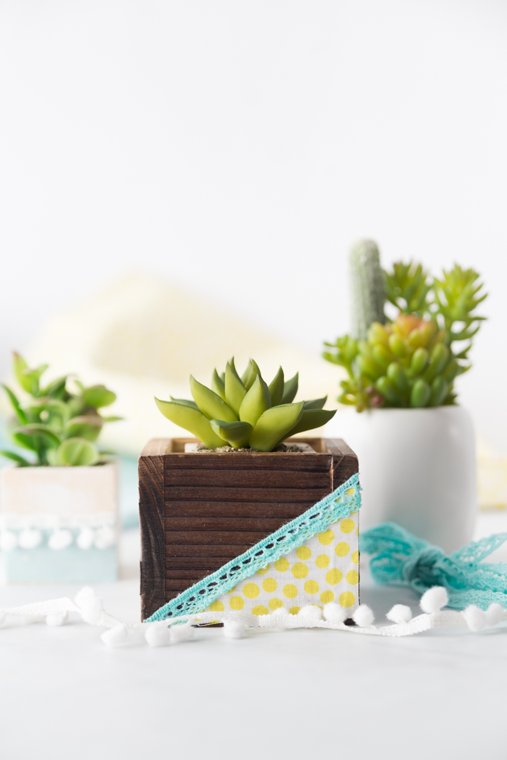 Succulent Planter How To