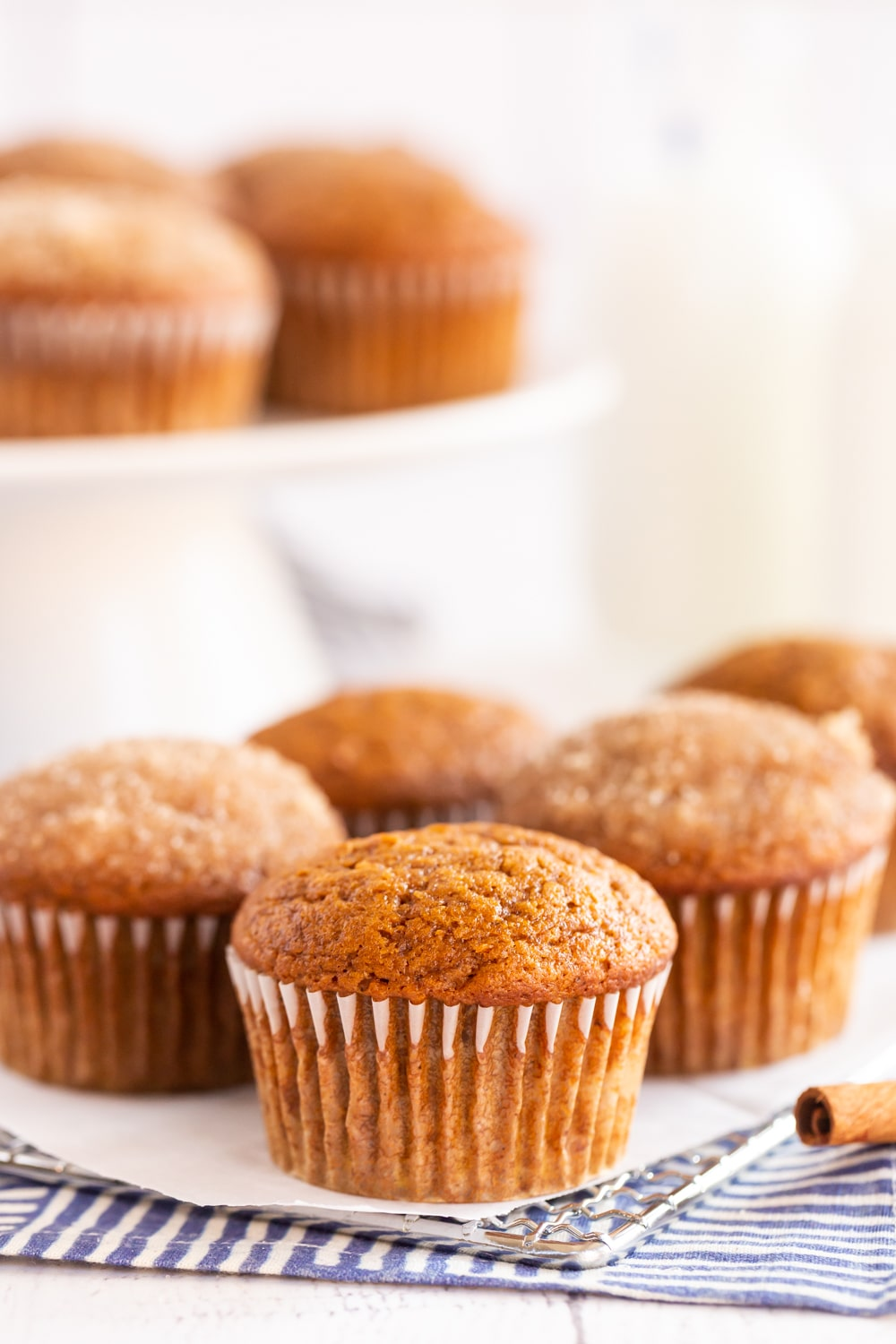These Pumpkin Muffins are bursting with pumpkin, cinnamon and a touch of nutmeg! You can enjoy them right out of the oven or dip in some melted butter and cinnamon sugar for an extra bakery touch.