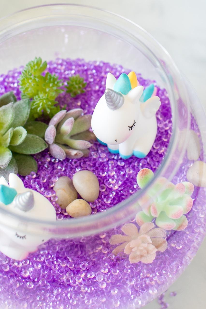 unicorn terrarium
