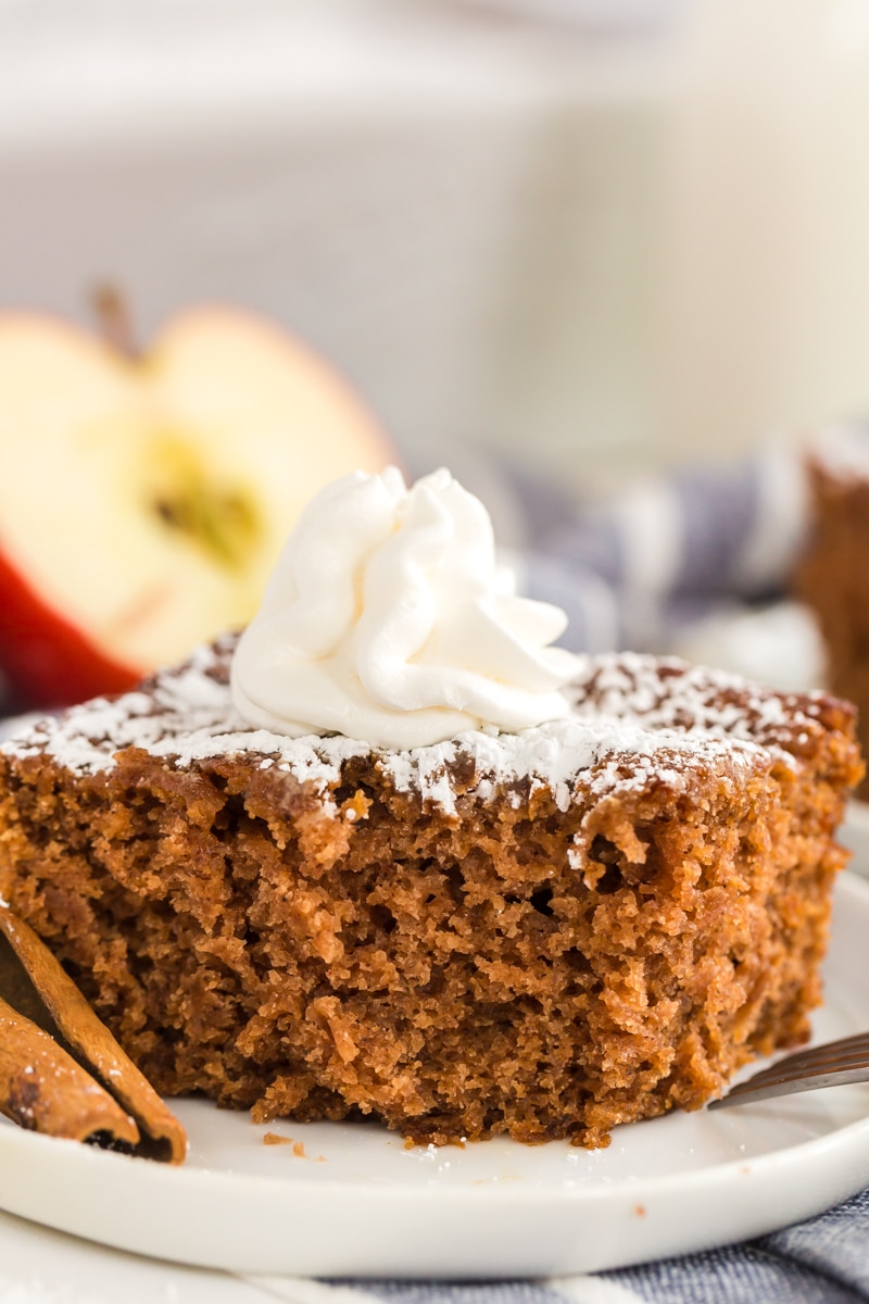 Applesauce Spice Cake is made with fall spices like cinnamon, ground cloves and allspice. This cake is delicious as is or with ice cream.